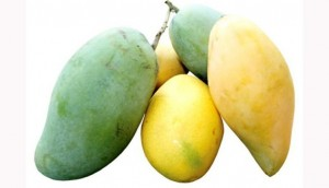 INTERESTING!! See What'll Happen If You Eat A Mango Every Day
